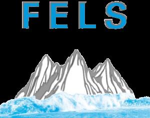 FELS Kunststofftechnik Logo mit transparentem Hintergrund